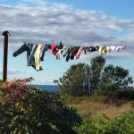 Laundry - Colleen Friesen