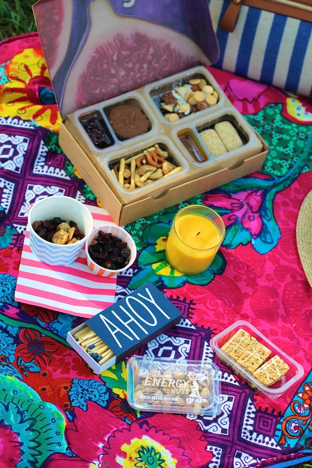 picnic perfect picnic graze snacks nourish snacks snack subscription snack subscription blogger picnic new york picnic bright picnic picnic basket new york picnic how to have a picnic picnic basket picnic in the park