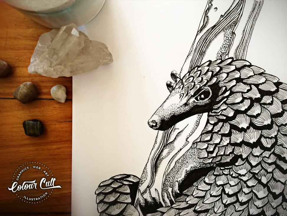 Colour Cult Pangolin - A to Z of the unusual illustrated by Tegan Swyny. Prints coming soon to colourcult.com.au
