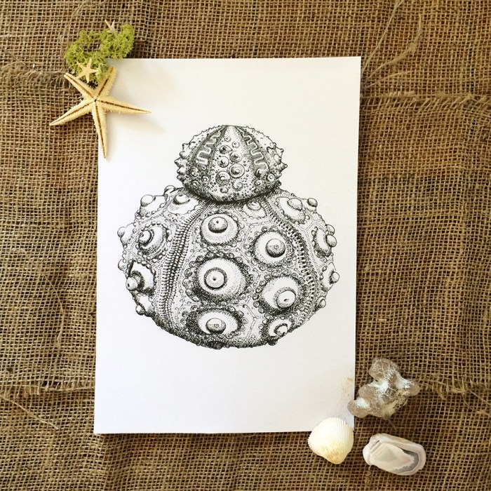 Colour Cult urchin illustration by Tegan Swyny. Dot art using technical pens.