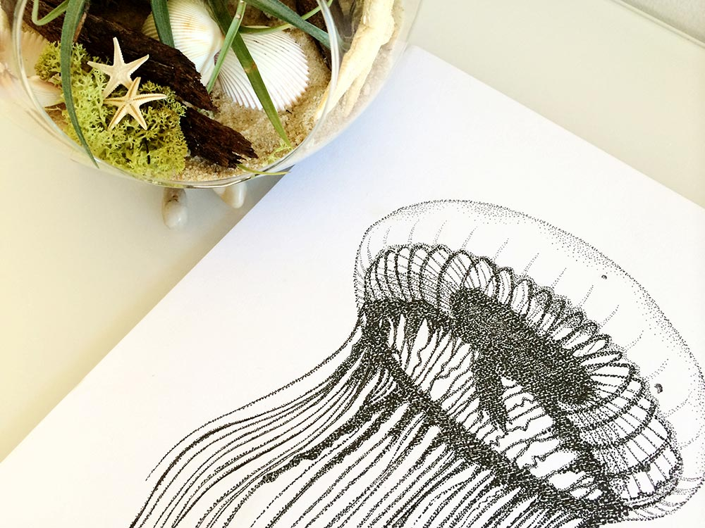 Colour Cult jellyfish illustration - drawing in dot art style by Tegan Swyny. Graphic design and illustration Brisbane.