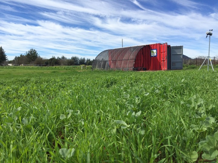 """the swiss army knife of sustainable farming"" - source: farmfromabox.com - container homes - coloursontheinside"