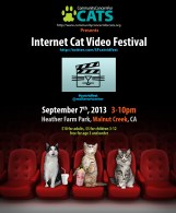 CC4C Cat Video poster4_print_info_flat