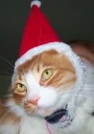 20111209 Archie Claus (5)