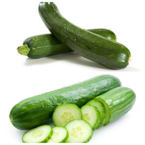 Medium Of Zucchini Vs Cucumber