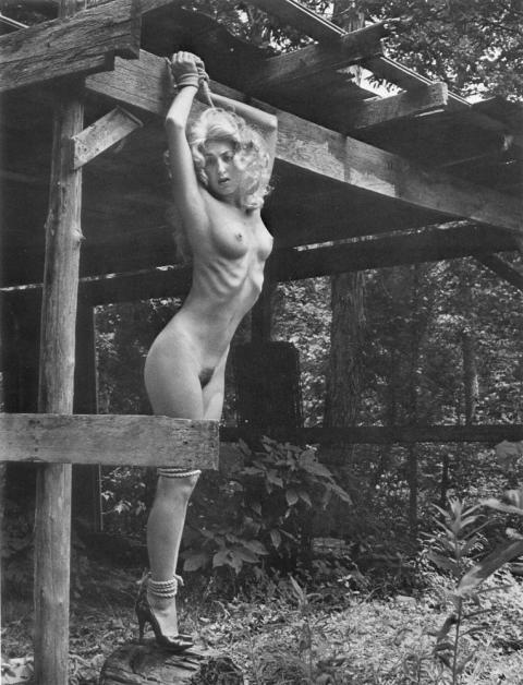 nudes on torture rack