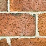 cropped-bricks-2-e13757998517831.jpg