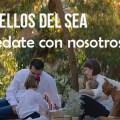 Destellos del SEA: ¡Quédate con nosotros!