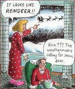 Reindeer or rain dear?