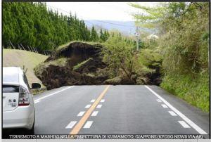 Figura 4: Movimenti franosi provocati dalla sequenza sismica in Giappone ( Foto Gallery RAINEWS http://www.rainews.it)