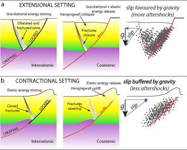 Figura: (a) Modello geologico del possibile ciclo sismico (ossia periodi inter-sismici e cosismici), associato a una faglia normale (sequenza estensionale). (b) Modello geologico del ciclo sismico (ossia periodi inter-sismici e cosismici), associato a una faglia inversa (sequenza compressiva). In entrambi i modelli è stata assunta una velocità di deformazione costante nella crosta inferiore all'interfaccia duttile/fragile. Le sequenze tettoniche estensionali sono caratterizzate da una durata più lunga delle repliche, in quanto il sistema si muove a favore della gravità e, in questo caso, il volume di crosta interessato dalla fratturazione cosismica collassa fino a raggiungere un nuovo equilibrio gravitazionale