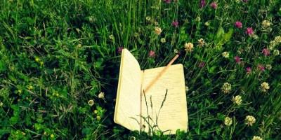 naturewriting