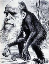 A caricature of Charles Darwin, that illustrates much of what is wrong with evolution, and why it is important to question evolution.