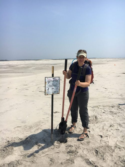 Our work is never done...CWF Wildlife Biologist Emily Heiser posting a new nesting area for endangered least terns.