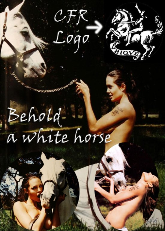 Angelina Jolie Horse CFR