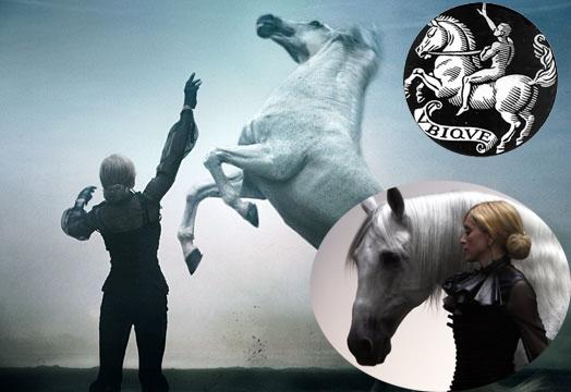 Madonna White Horse
