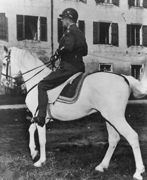 Patton White Horse