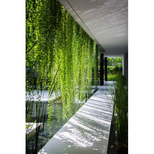 Medium Crop Of Hanging Gardens Images