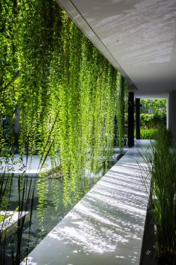 Simple A Walkway Through Hanging Gardens This Walkway Through Hanging Gardens Is Hot On Pinterest Today Hanging Gardens Mumbai Images Hanging Gardens S
