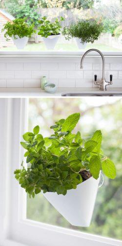 Small Of Indoor Wall Herb Garden Ideas