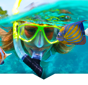 Cancun Tours Daily Adventure Trips Snorkeling