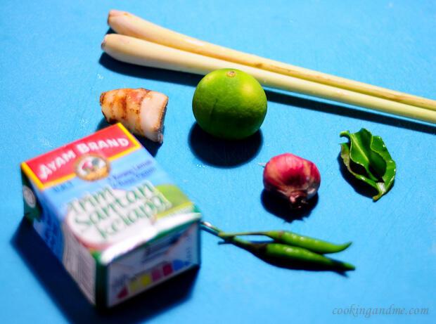 vegetarian thai tom kha gai soup