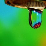 The Best Little-Known Water-Saving Tip