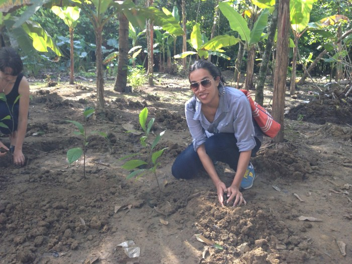 Planting my first cacao tree