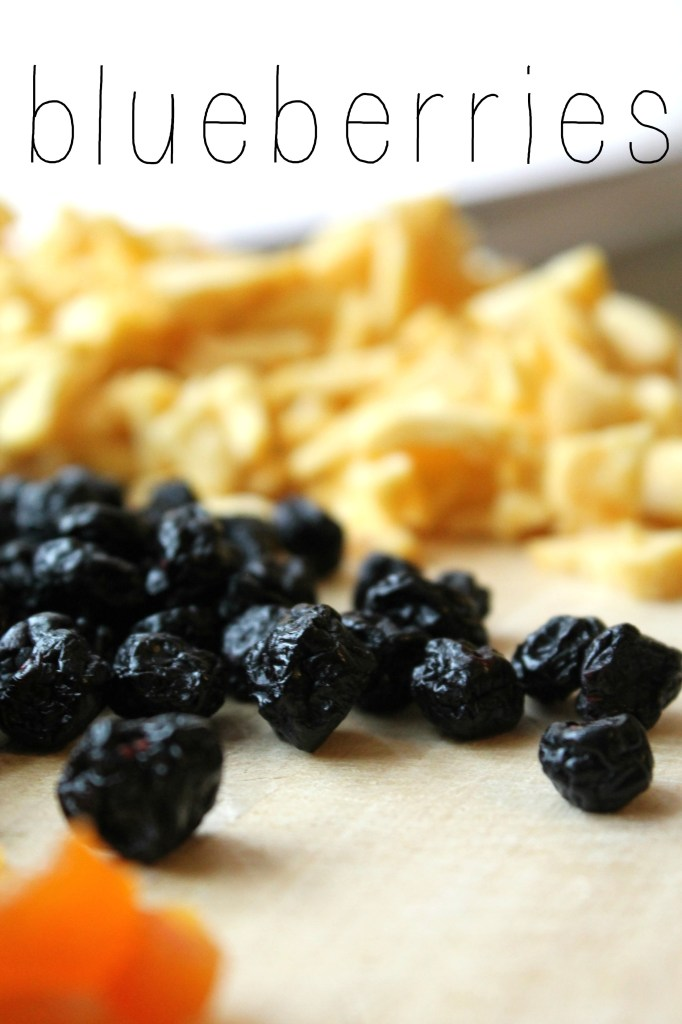 DIY Instant Oatmeal Packets Blueberries