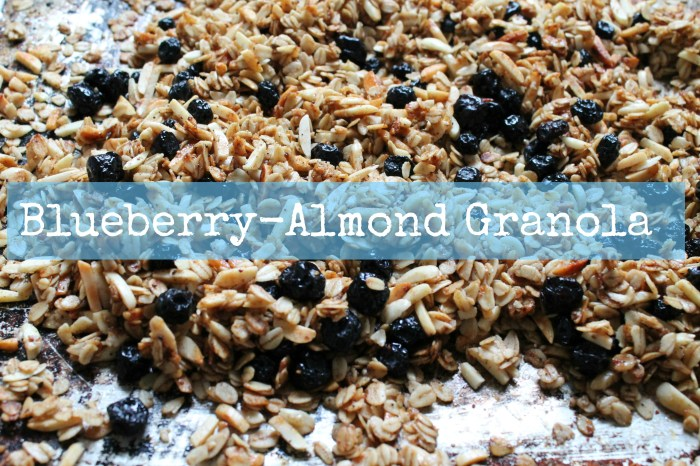Blueberry-Almond Granola Recipe - Cooking with Books