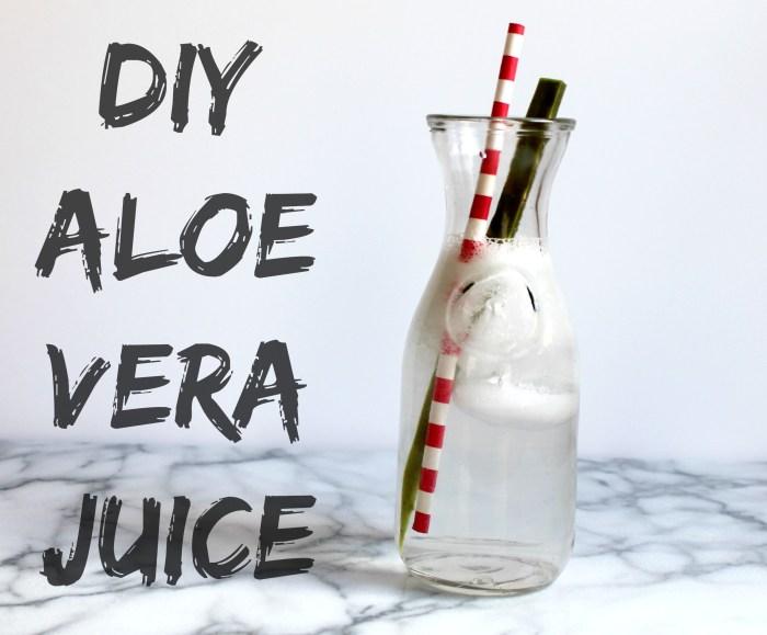 DIY Aloe Vera Juice  04