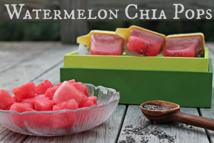 Watermelon Chia Pops | Cooking with Books
