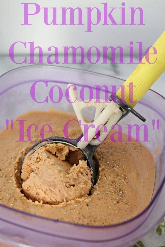 Pumpkin Chamomile Coconut Ice Cream 03