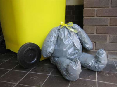 Teddy Bear Bin bag