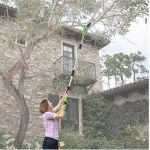 Cordless Long Reach Chainsaw lets you tackle those hard-to-reach areas