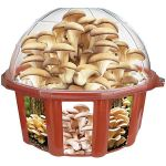 Grow Your Own Mushroom Dome makes things even easier