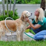 The Woof Washer 360 only works on patient pups