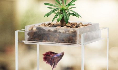 Vita Fish Tank Planter