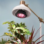 Spectrum Optimized LED Grow Light gives an added boost to plants