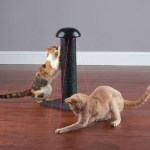 This Scratching Post has Lasers to drive your cats insane