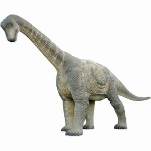 Full Size Camarasaurus Dinosaur Replica
