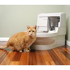 cat-genie.jpg