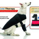 Your pet will love you for bringing the Therapy Pet Jacket home