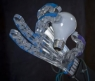 Raphael Robotic Hand