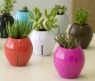 Grobal Self-watering Planters