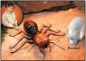 Indiana Jones Giant Radio Controlled Ant