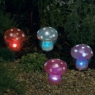 Magic Mushrooms for your magical garden
