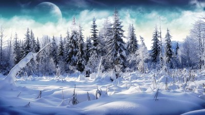 Snow Nature Trees Wallpaper | Download wallpapers page