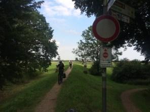 Elberadweg bei Dessau mit Umleitungen