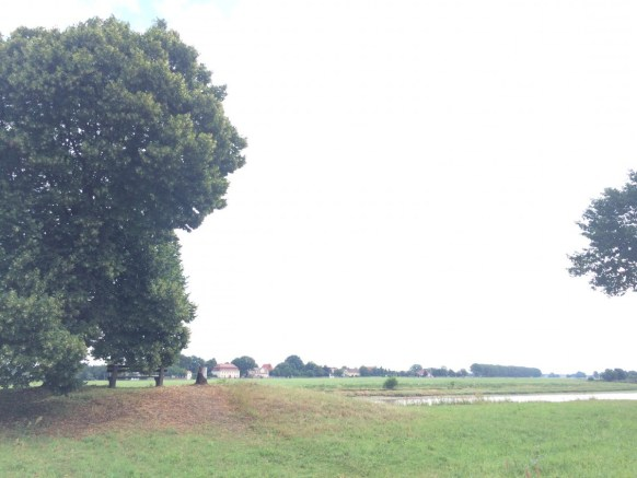 Strehla Blick auf Lorenzkirch